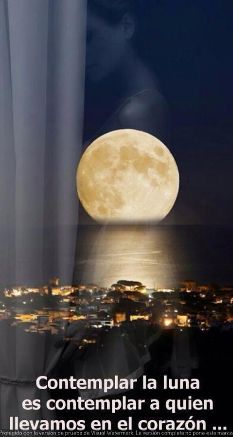 linda noche prima
