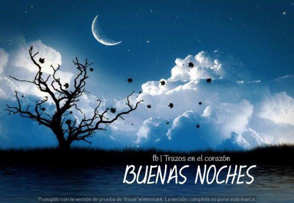 buenas noches mi gente linda